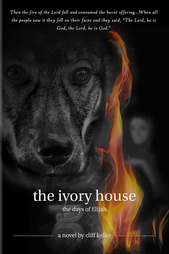 The Ivory House book cover